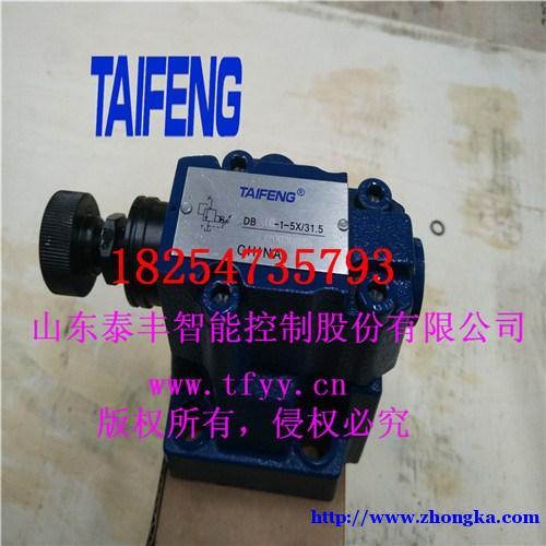 DB10-1-5X-泰丰专业打造控制盖板知名品牌