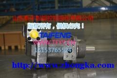 TFA10V45DFLR柱塞泵_柱塞泵厂家_泰丰股份