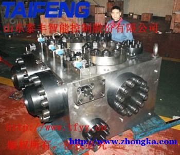 泰丰销售XN32-300CV-00A快速缸插装阀